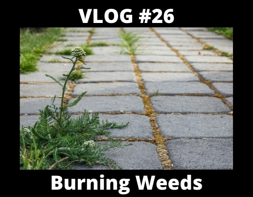 VLOG #26 – Burning Weeds, Lawns